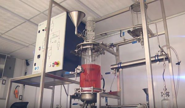 Erzeugtes Biodiesel