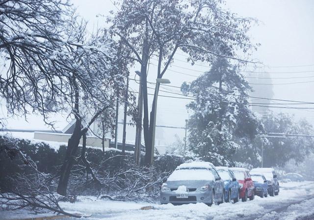 Viele Bäume konnten dem Gewicht des Schnees nicht standhalten. - Aufnahme: EPA
